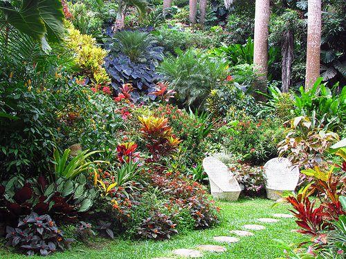Hunte S Gardens Tropical Landscaping Tropical Garden Design Tropical Garden