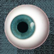 500 Best Eyes Lense Png Full Hd Transparent Images Blue Eye Color Cool Eyes Eye Outline