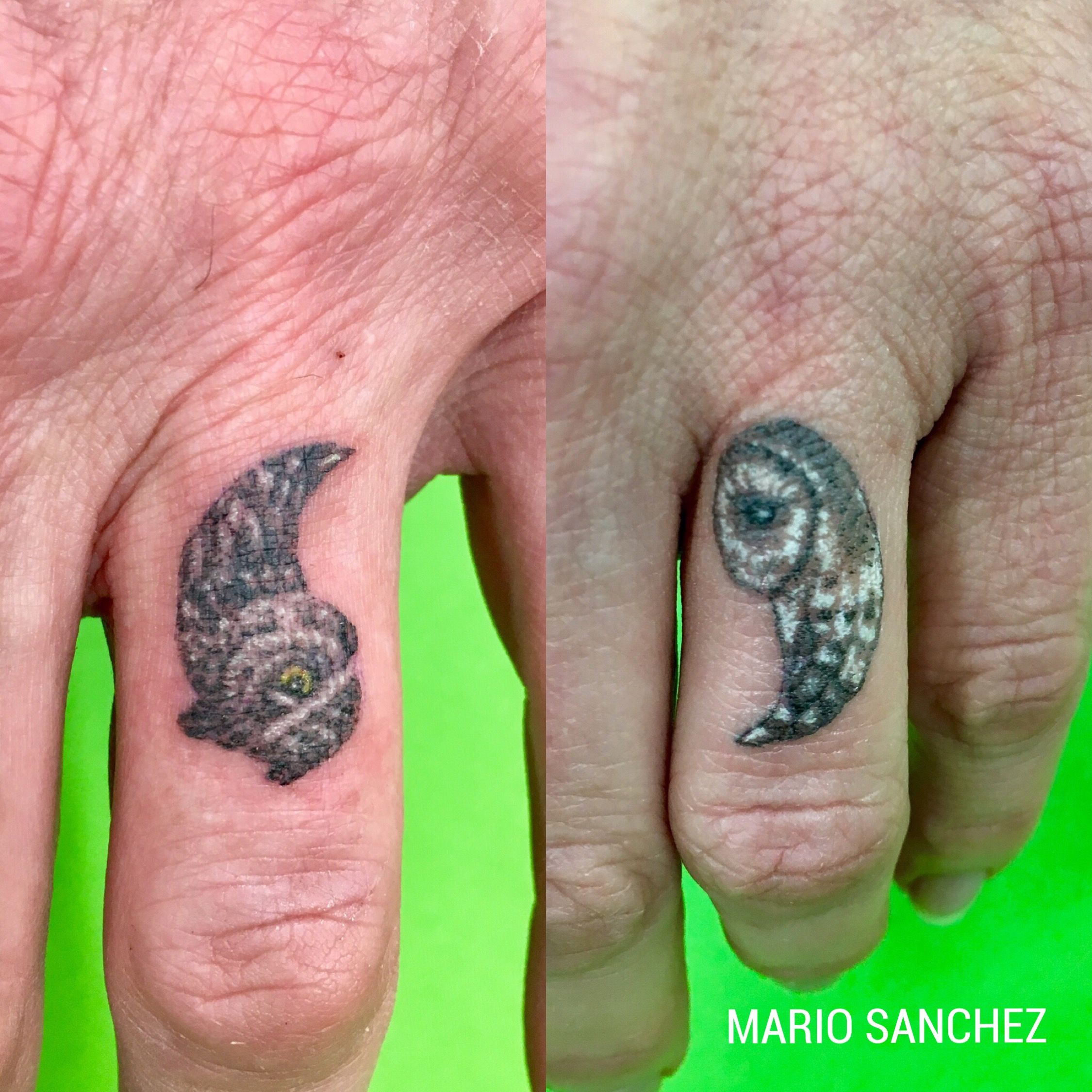 His and hers finger owl tattoos | Miniature Black Tattoos ...