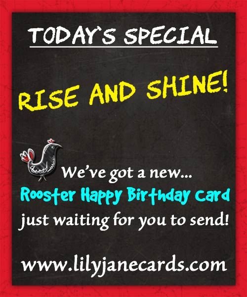 Today Is Someone S Birthday Send Them Our New Rooster Happy