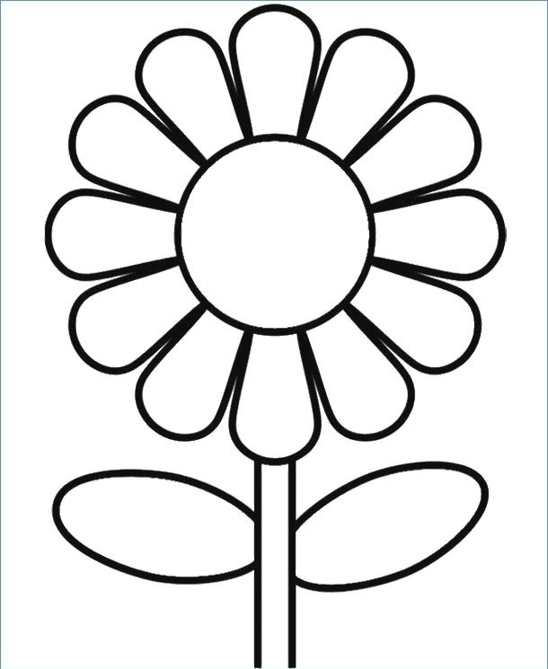 30 Minute Easy Homemade Clean Eating Chili Recipe My Natural Family Recipe Sunflower Coloring Pages Flower Coloring Pages Printable Flower Coloring Pages