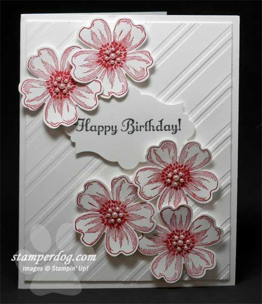 Pretty Quick And Clean Birthday Card Stampin Up Demo Ann M Clemmer Stamper Dog Card Ideas Embossed Cards Flower Cards Floral Cards