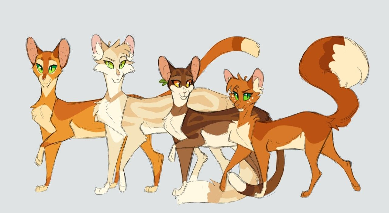Pin By Pamela On Cats Warriors Warrior Cats Art Warrior Cat Drawings Warrior Cats