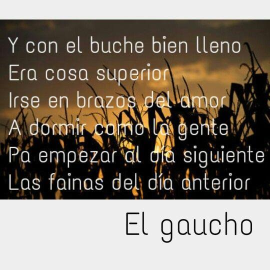 El Gaucho Martin Fierro José Hernández Gaucho Lectura
