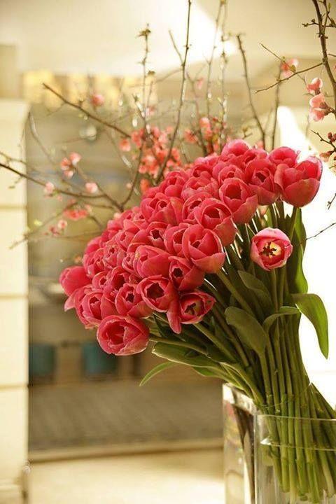 Arreglos Florales Feliz Cumpleaños Postales Cumpleaños Y