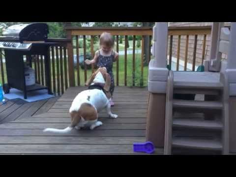 The giggles! Oh my! THE GIGGLES!   Take A Little Break And Watch This Toddler And Her Dog Dance