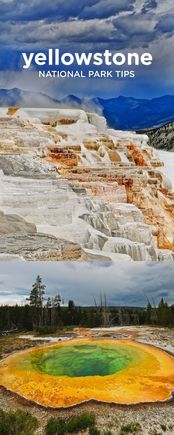 The Best Way to See Yellowstone Where to Spot Wildlife Best Day Hikes