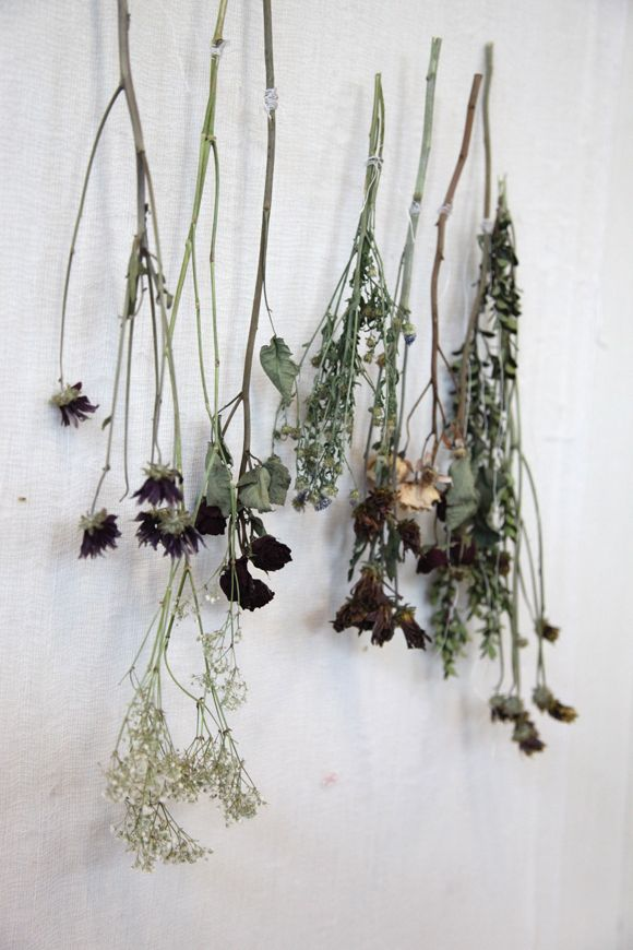 People Decorating diy decor: decorating with dried flowers | free people blog