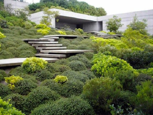 minimalistisches flachdachhaus garten berwuchert treppe beton design gorgeous greens. Black Bedroom Furniture Sets. Home Design Ideas