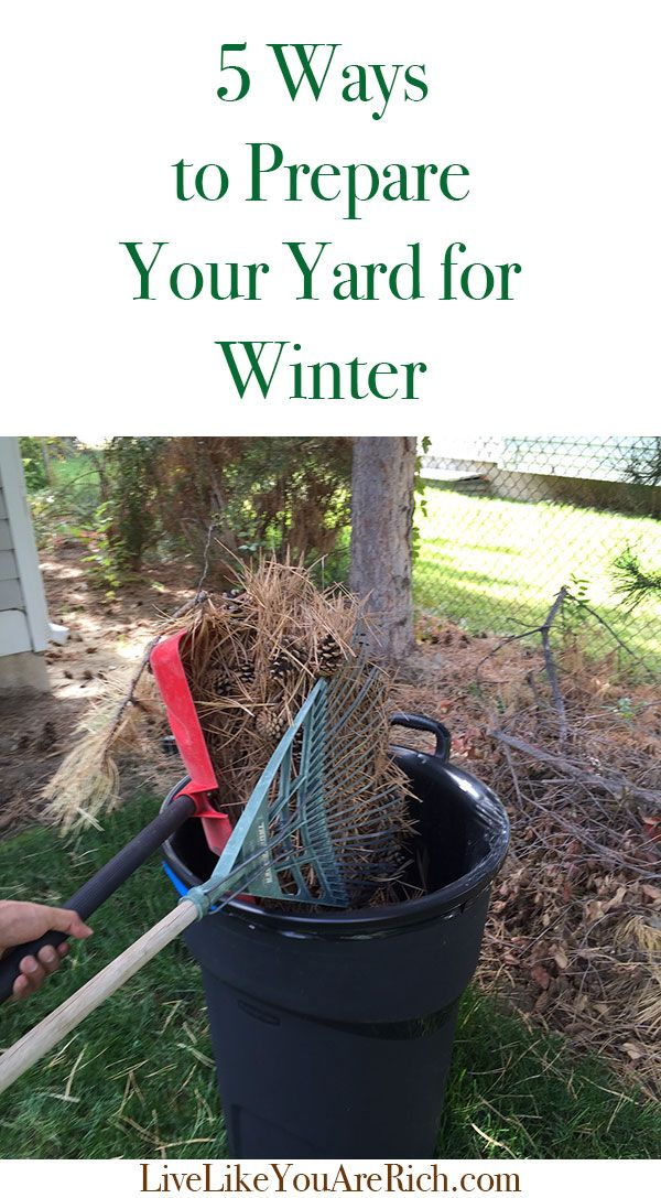 5 Steps to Prepare Your Yard for Winter