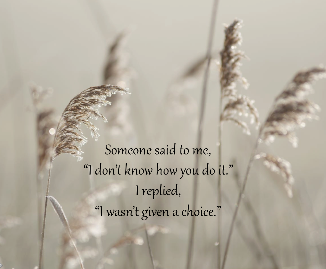Someone Said To Me Me Quotes Words Quotes