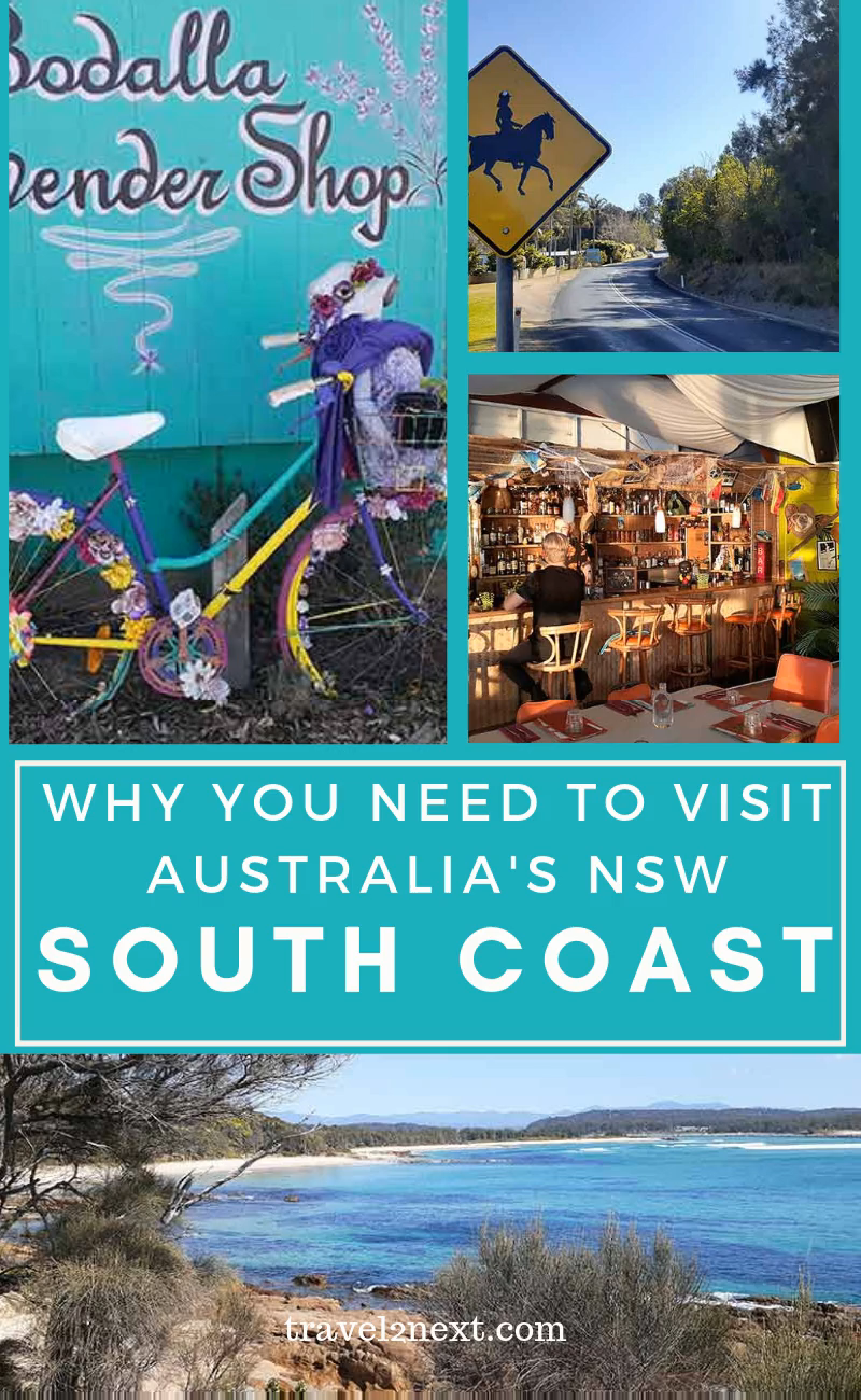 Reasons To Visit The Nsw South Coast This Summer Video South Coast Nsw Travel Australia Travel