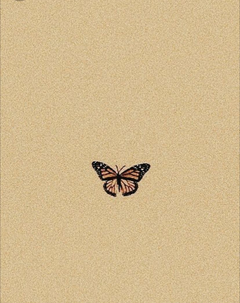 Butterfly Cute Patterns Wallpaper Aesthetic Backgrounds Aesthetic Wallpapers