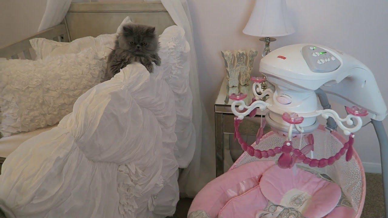 Fisher price rose chandelier cradle n swing overview baby girl fisher price rose chandelier cradle n swing overview baby girl swing arubaitofo Gallery