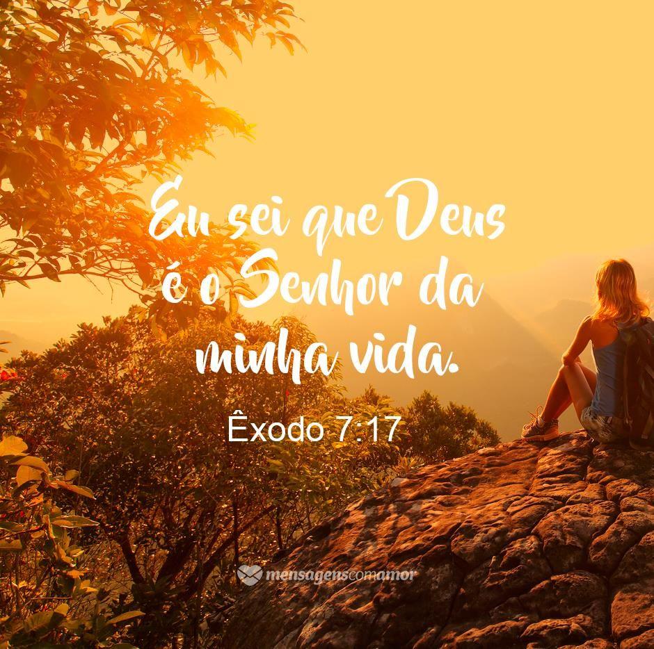 Deus Obrigado Por Tudo Boa Noite E Bom Dia God God Is Good Bible