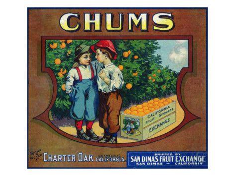 Charter Oak San Dimas Chums Orange Citrus Fruit Crate Label Art Print