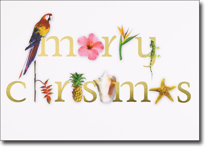 Tropical Merry Christmas Cards