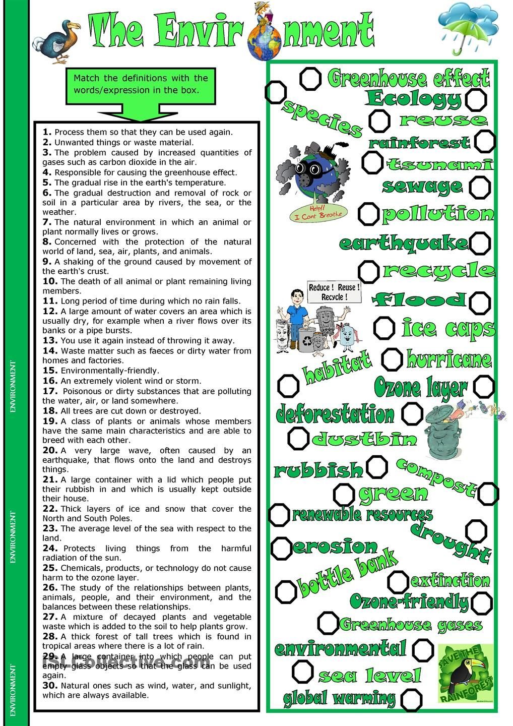 Worksheets Ecology Vocabulary Worksheet the environment angol pinterest english and matching exercise with vocabulary