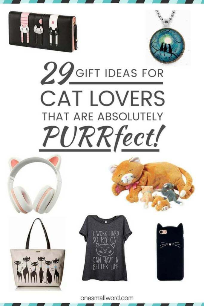 The wait is over! Are you ready to see the 29 best gifts ideas for Cat Lovers in 2016? It would be a CATastrophe if you missed out on these!