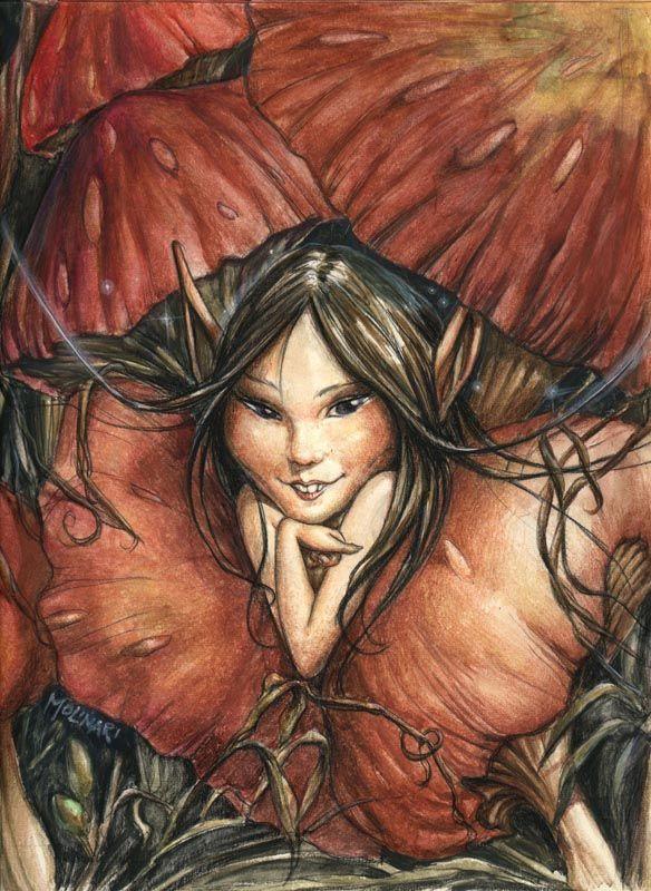 Fernando Molinari fairy gallery