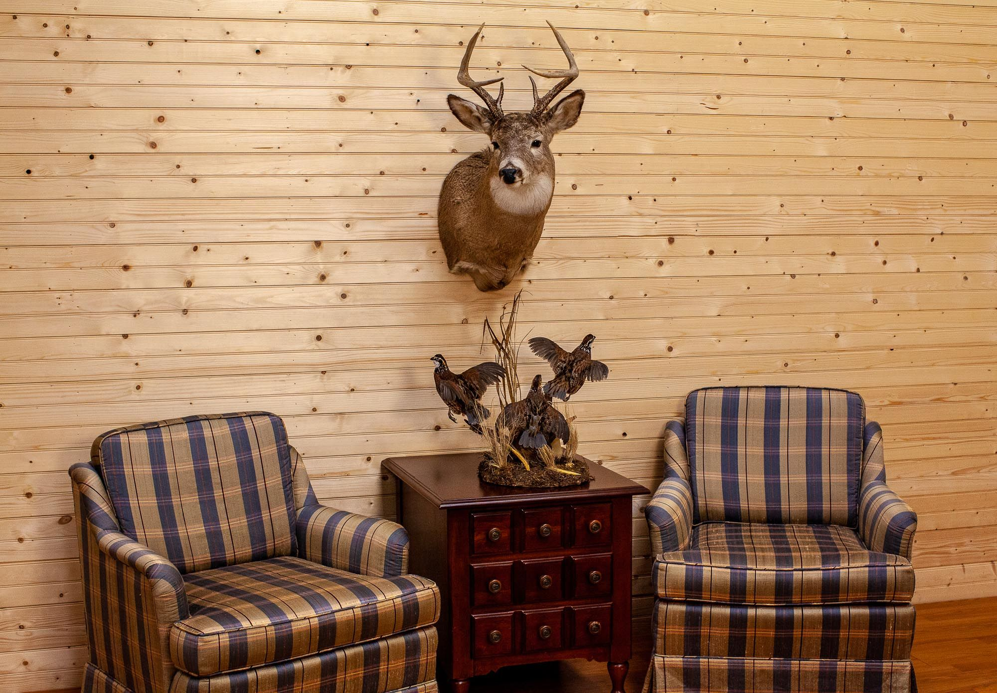Photo of Rustic Chic, Cabin, Lodge, Outdoorsy & African Style Decor & Taxidermy