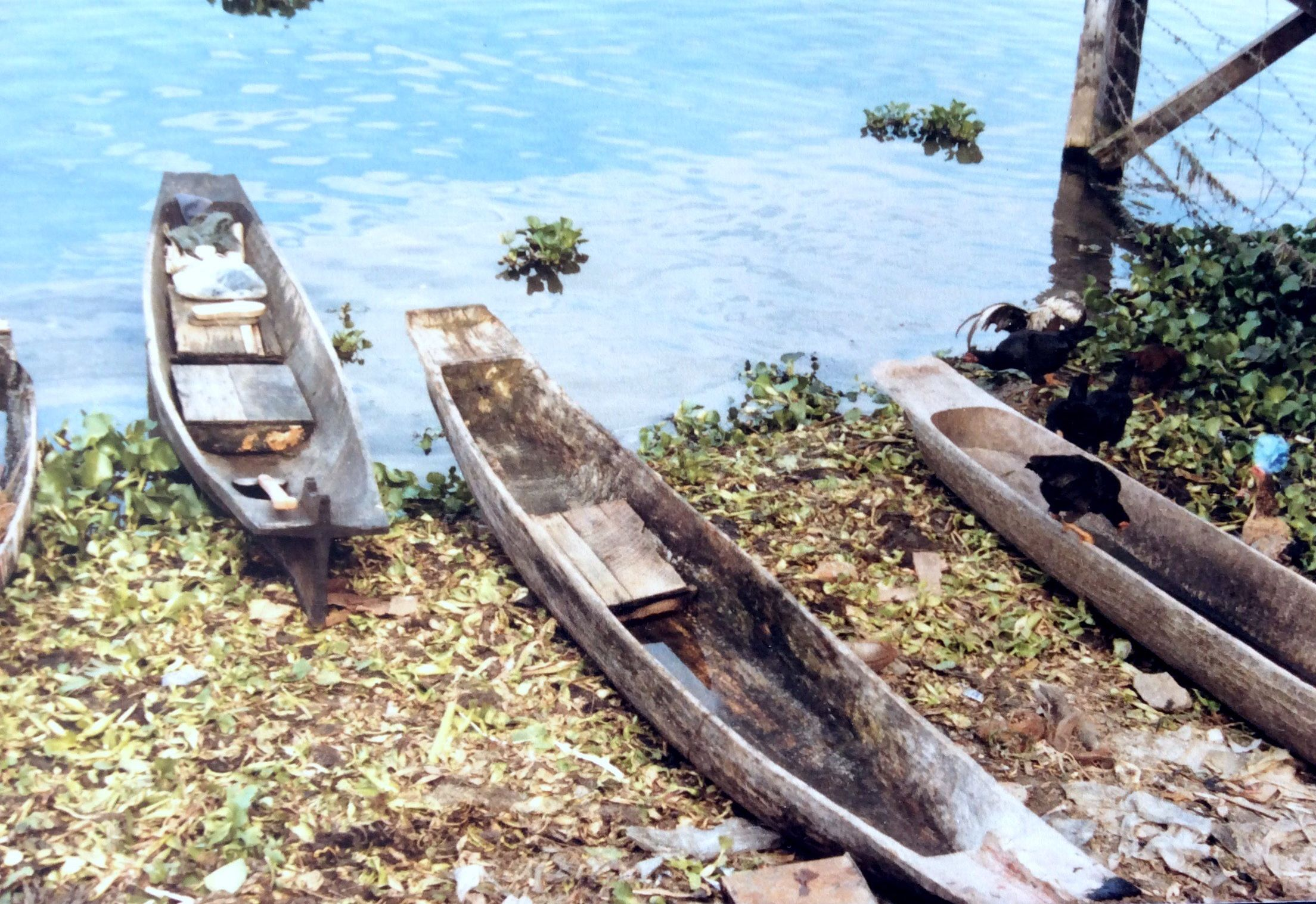 Tobameer Sumatra
