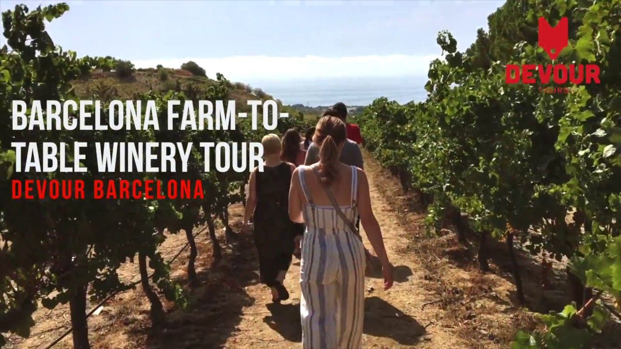 Barcelona Winery Tour with Wine Tasting and FarmtoTable