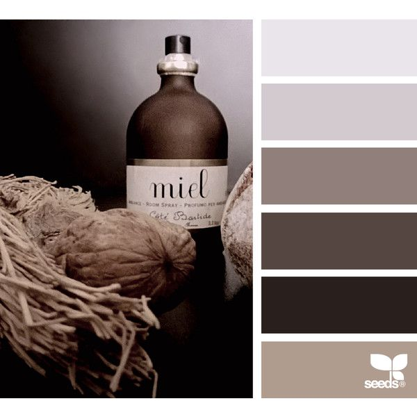 design seeds   for all who ♥ color ❤ liked on Polyvore featuring backgrounds, design seeds, color, brown and filler photos