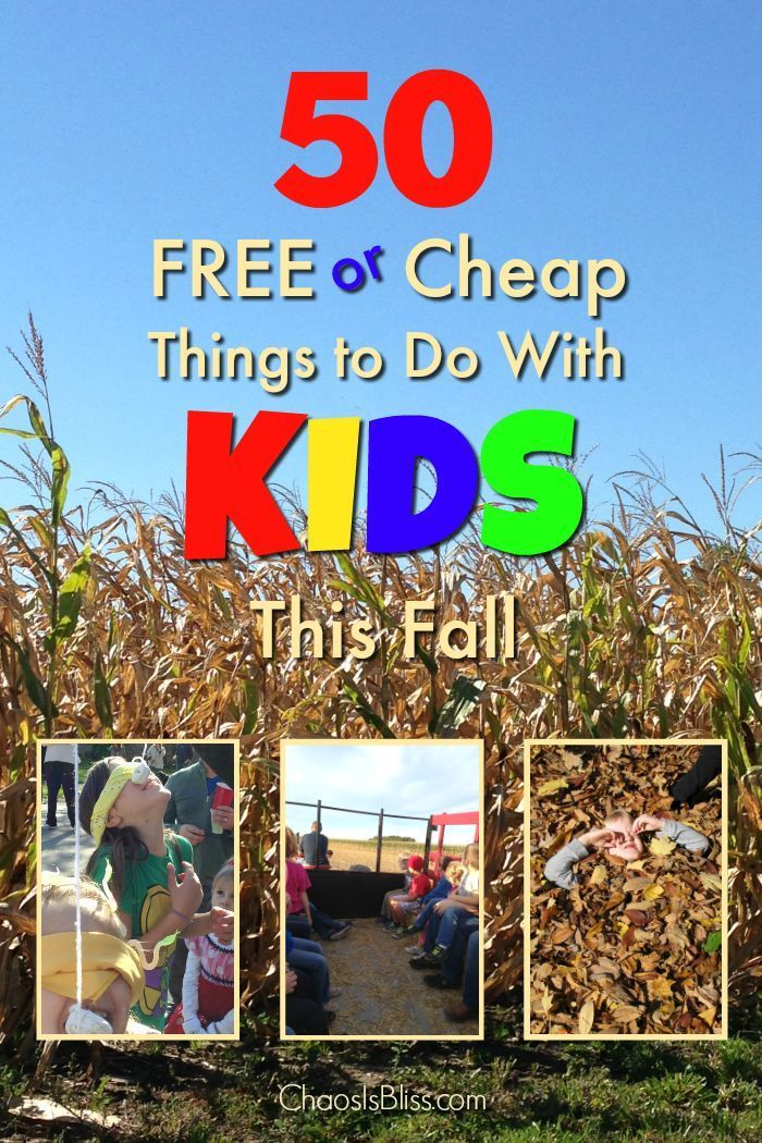 Here are our fall family activities perfect for kids of all ages: