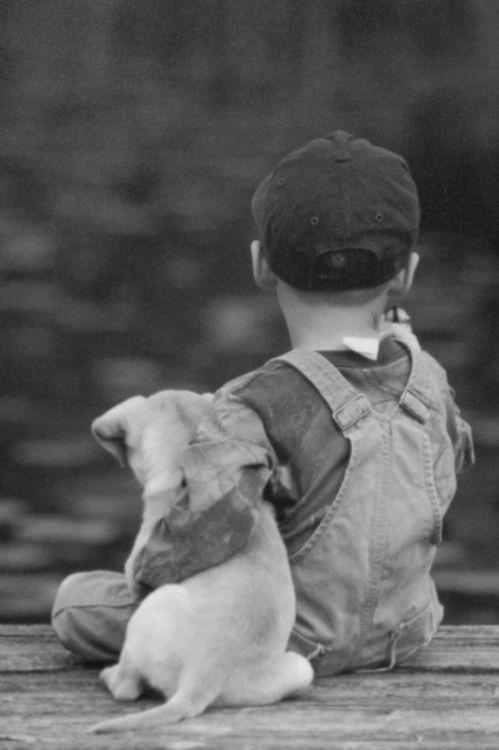Tumblr ペット用品 子犬 かわいい ペット