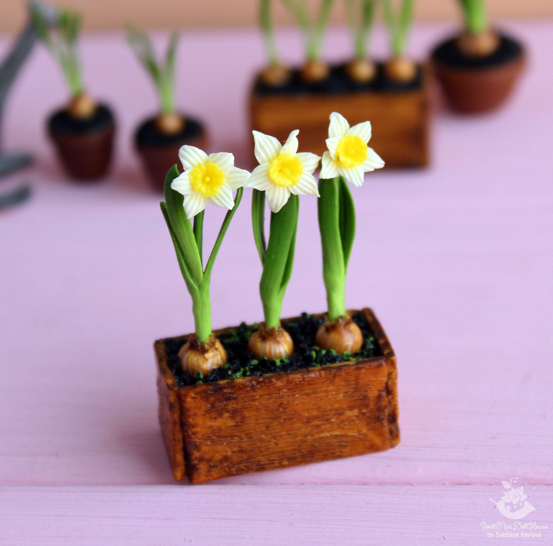 2 White Daffodil Flower Clay Plant Pots Ceramic Dollhouse Miniatures Room Decor