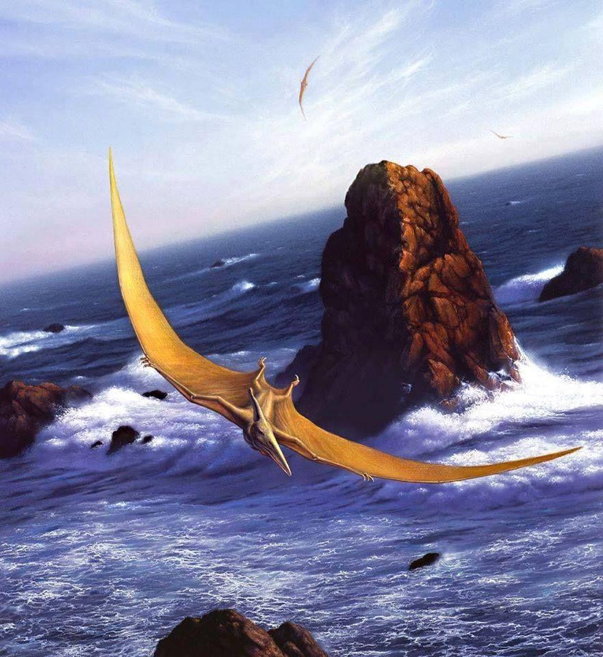 Pteranodon Por jerry lofaro