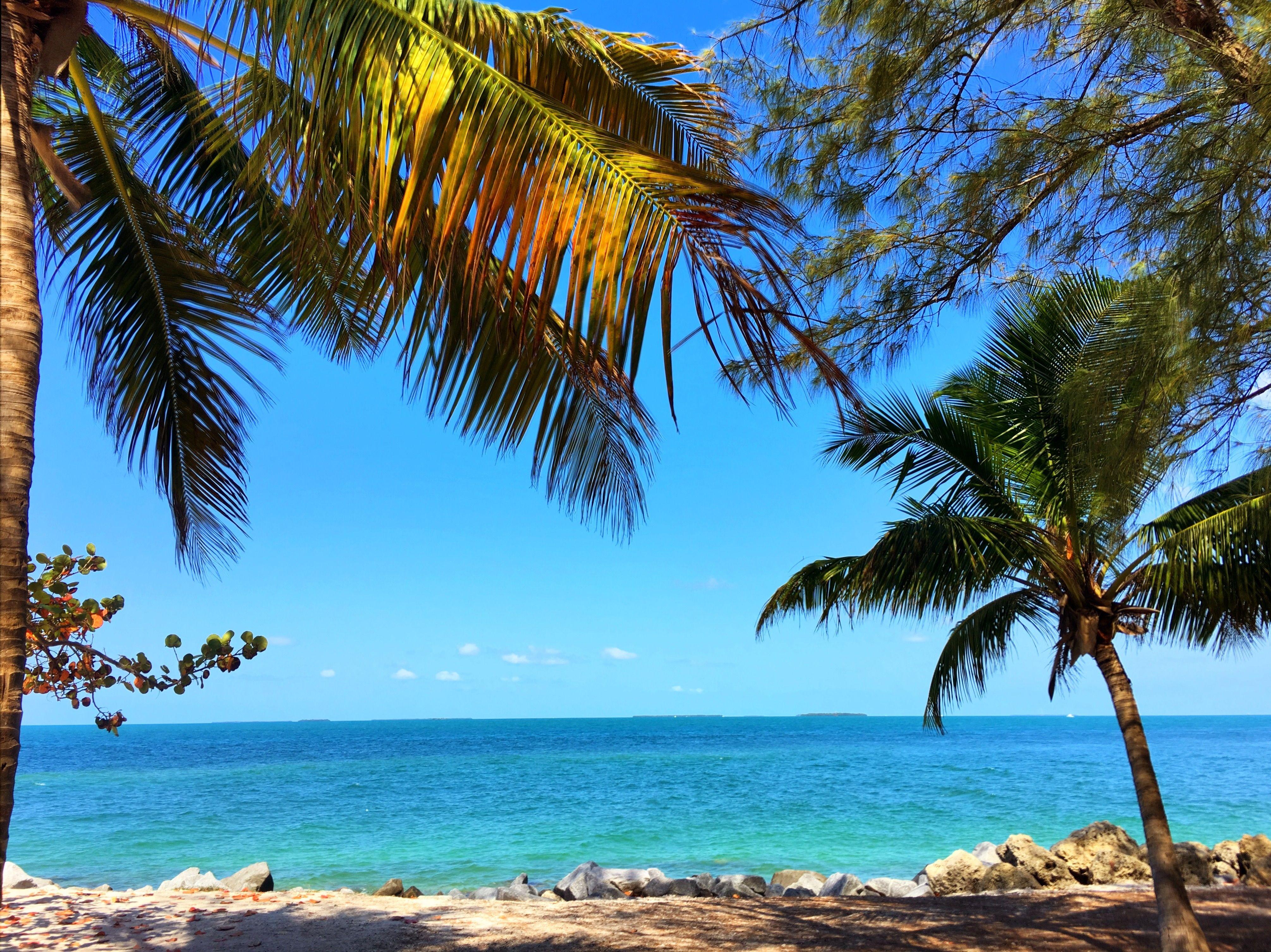 #keywest #florida #beach #bluesky (With images)   Key west ...