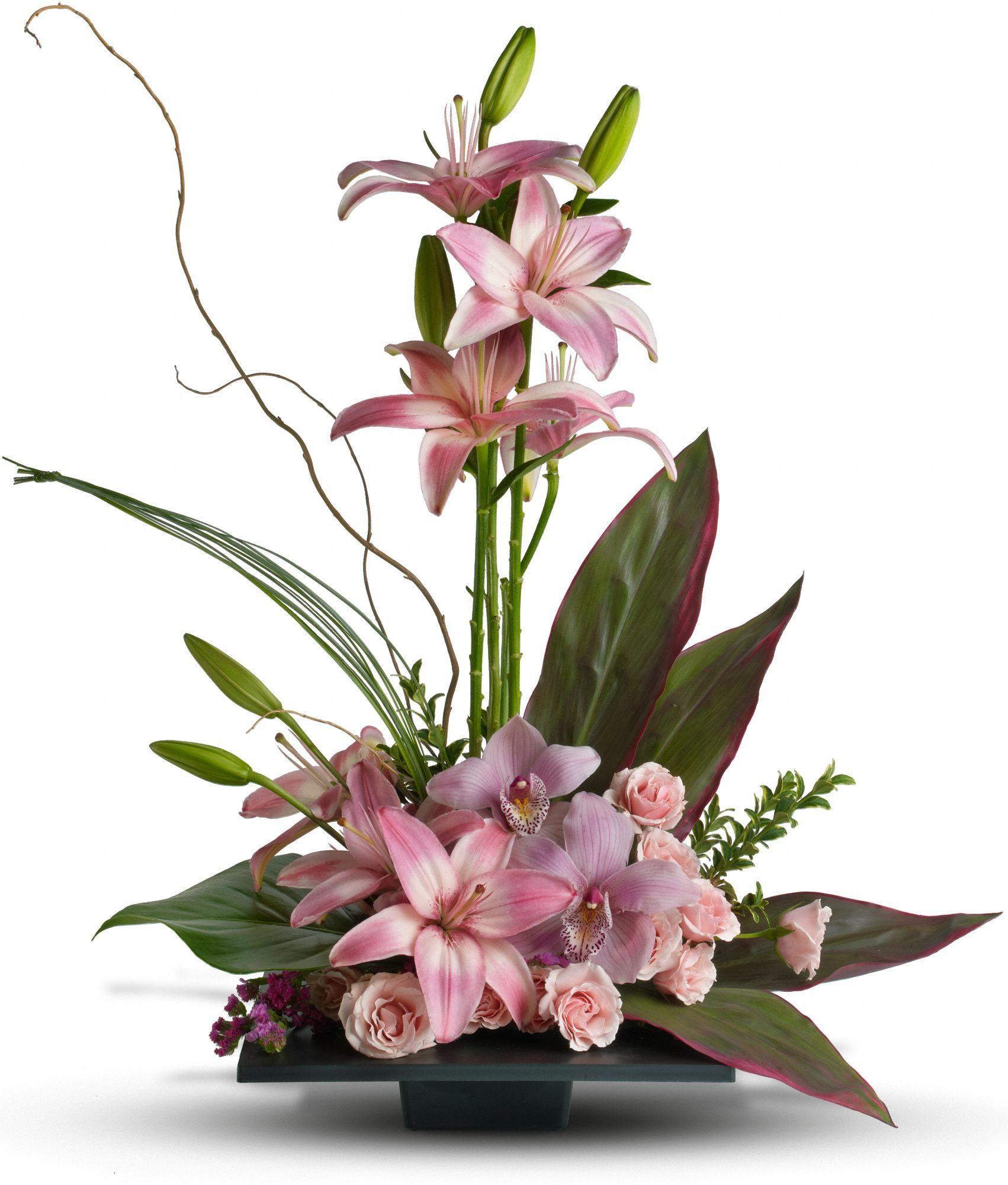Imagination Blooms With Cymbidium Orchids Flowers Imagination Blooms With Cymbidium Orchid Flower Arrangements Church Flower Arrangements Flower Arrangements