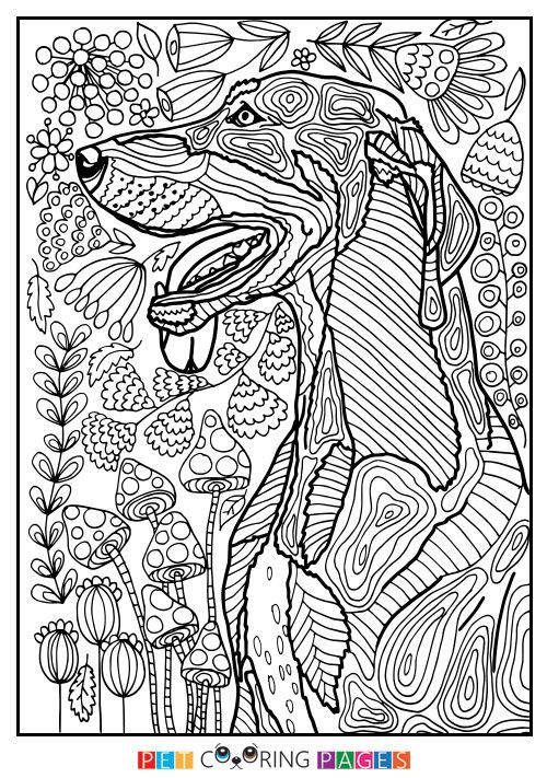 Free printable Black and Tan Coonhound coloring page \