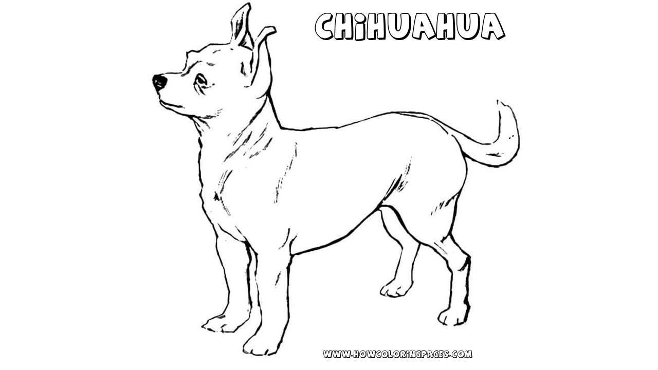 Printable Chihuahua Coloring Pages For Kids Coloring Pages Coloring Pages For Kids Dog Coloring Page
