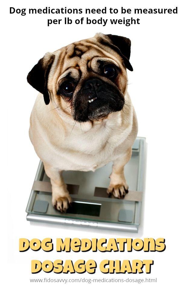 Dog Medications Dosage Charts Medication For Dogs Dog Medicine Dog Daycare Near Me