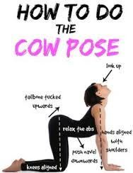 posture practice cow pose gomukhasana benefits