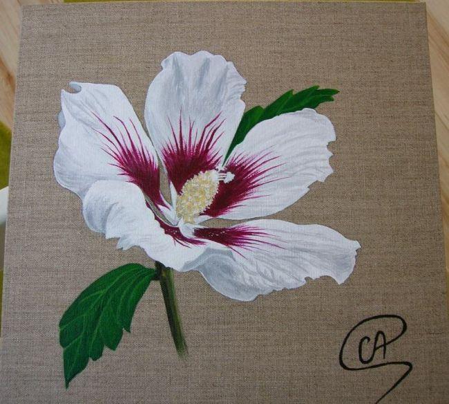 fleur du peintre   peinture peinture fleur - hibiscus blanc