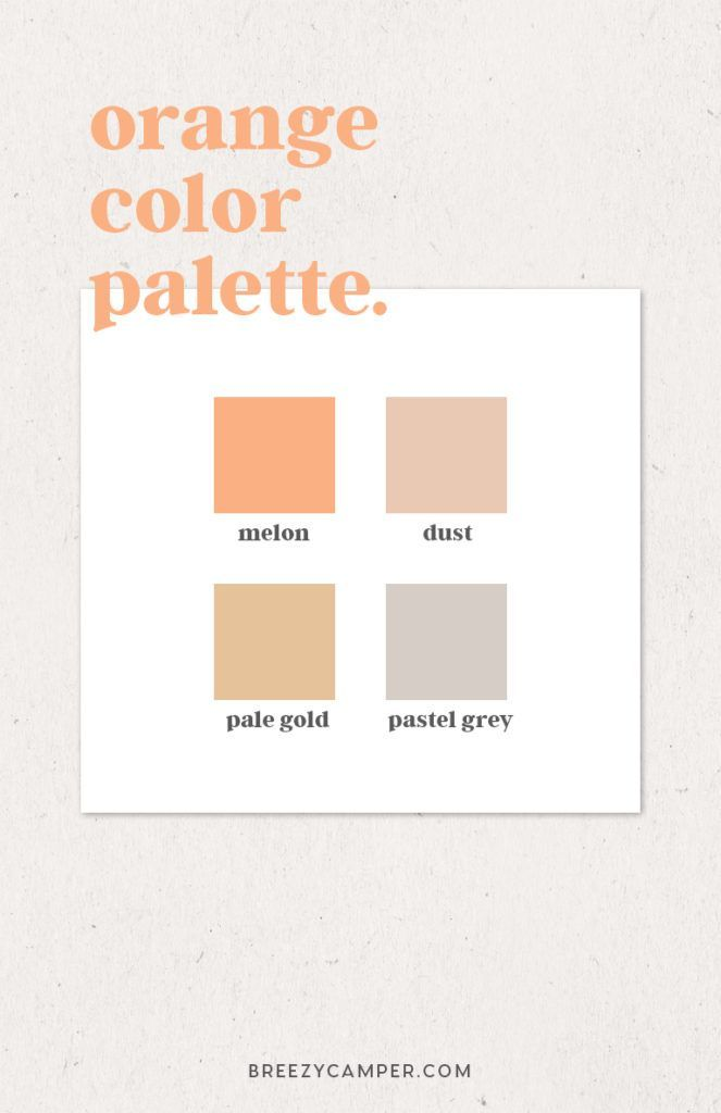 How to Easily Find a Color Palette for Your Brand - Breezy Camper