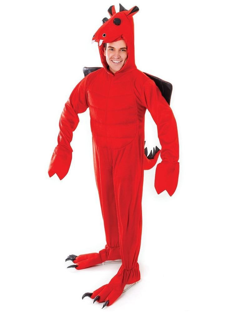 Buy Adults Dragon Costume u0026 Halloween Fancy Dress St Georges Day Costumes at competitive prices. Browse Fairytale Fancy Dress u0026 Animal Costumes with mega ...  sc 1 st  Pinterest & Adult Red Dragon St. Davids Day Fancy Dress One Size Costume | Wear ...