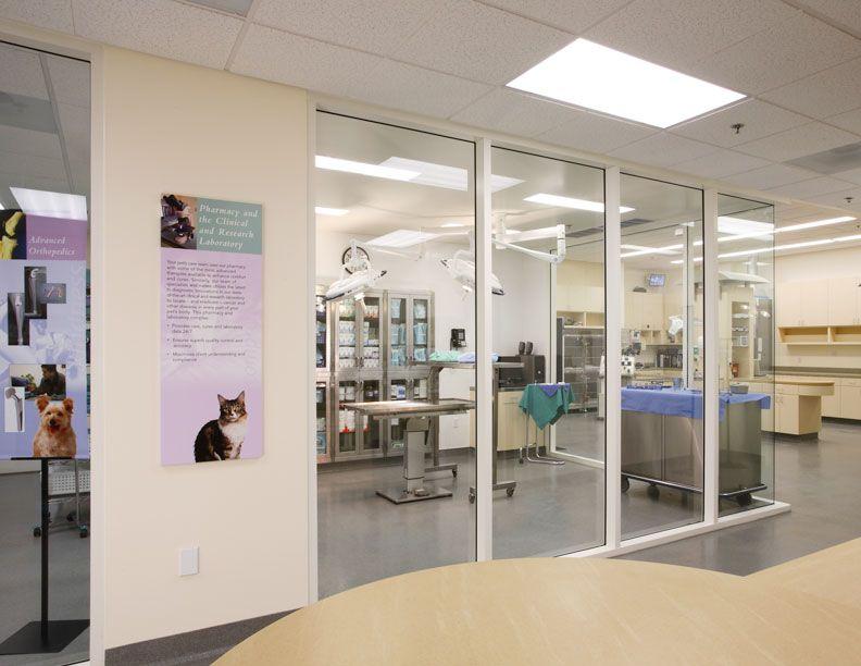 Windows Into Surgery Hospital Design Dream Hospital Pinterest Hospital Design