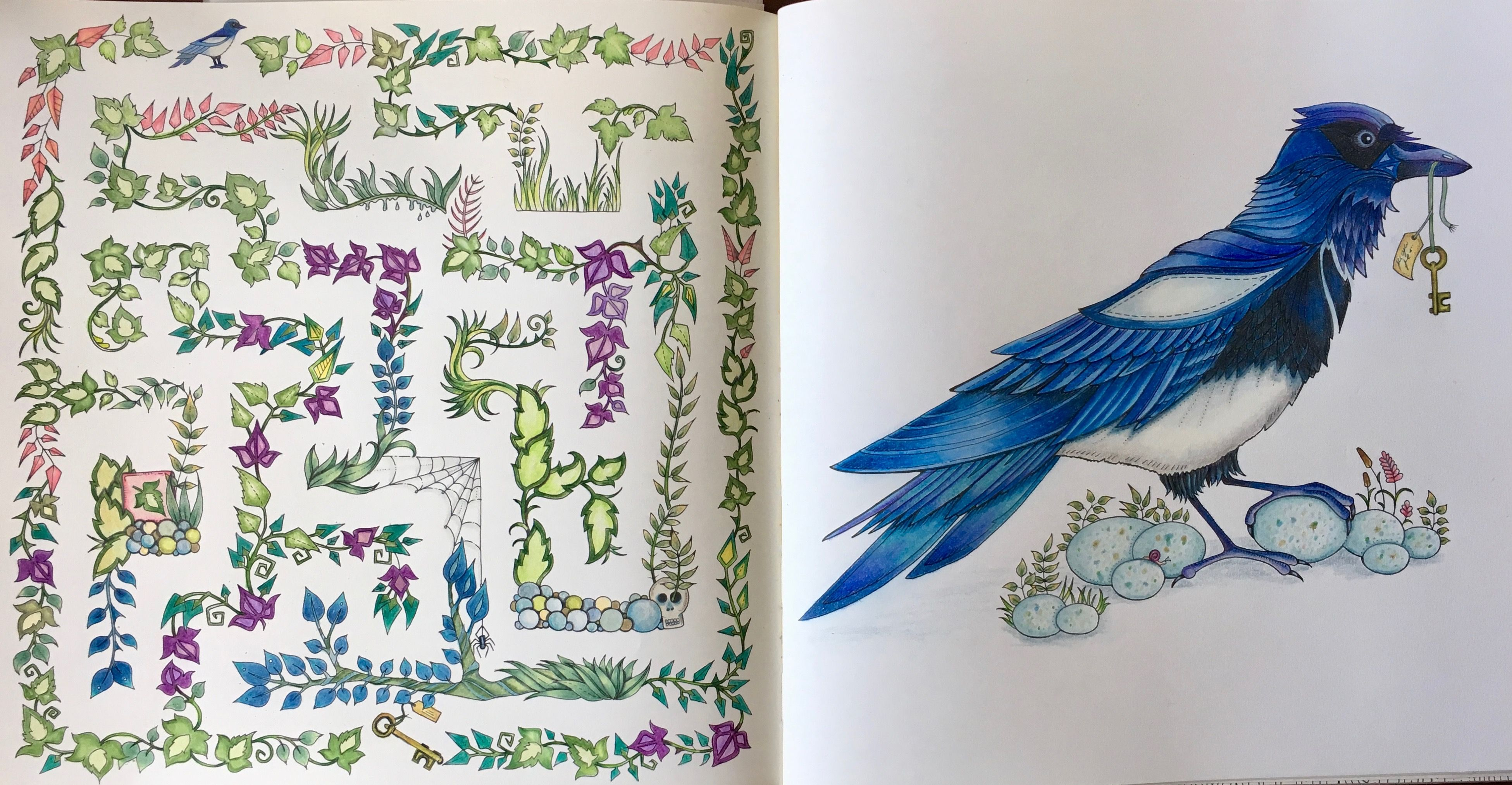 Johanna Basford Enchanted Forest Magpie Labyrinth Crow Pie Johannabasford Enchantedforest Polychromos Fabercast Polychromos Wenn Du Mal Buch Bucher