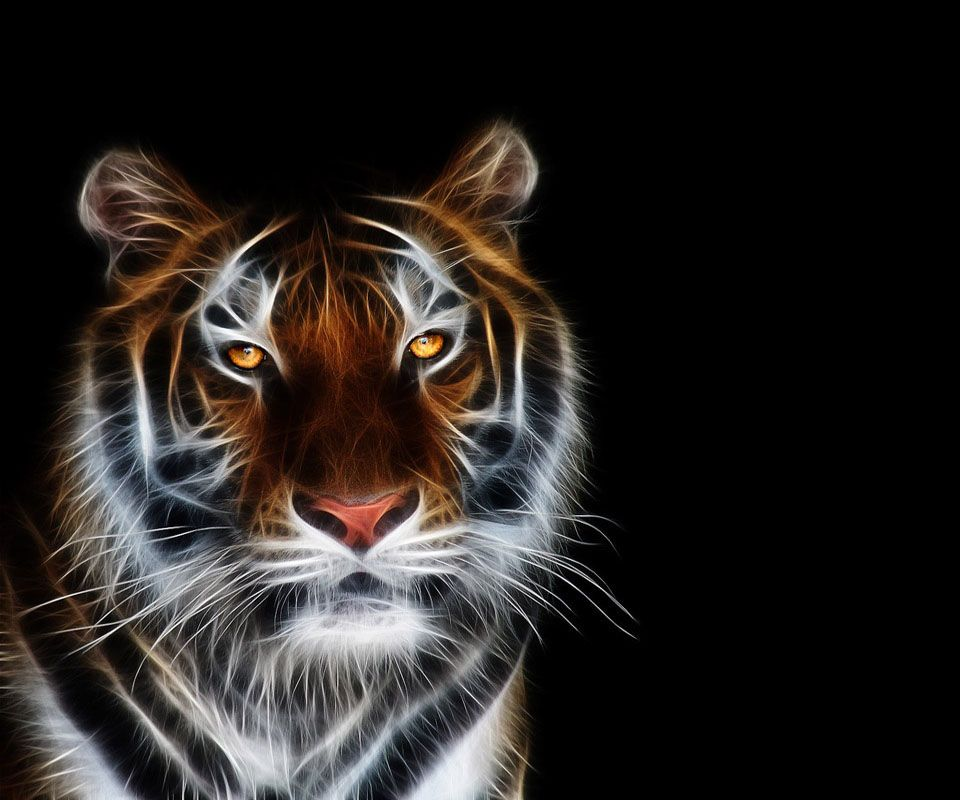 Tiger Art Wallpaper Jpg 960 800