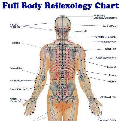 full body reflexology chart  Salute e Benessere  Pinterest