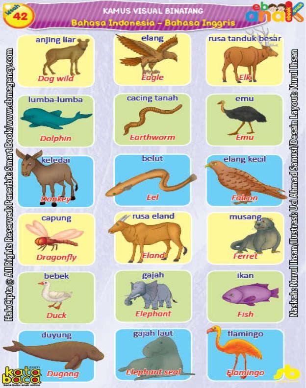 Kamus Visual Binatang Dua Bahasa Indonesia Inggris 4 Binatang Bahasa Indonesia Bahasa