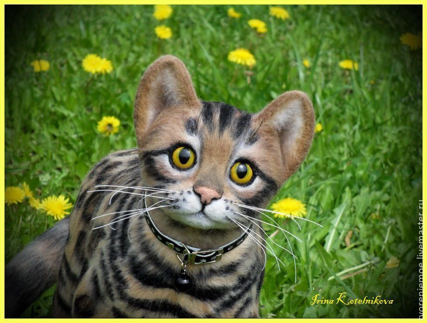 Купить Бенгальский котик. игрушка из шерсти и ниток мохер
