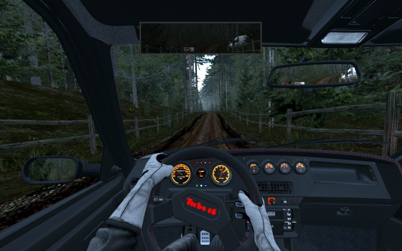 Assetto Corsa - Peugeot 205 Turbo 16 ( Onboard ) - Forest Rally Stage 2