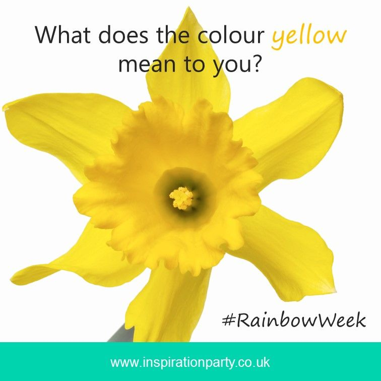 Rainbow Week What Does The Colour Yellow Mean To You Sunshine