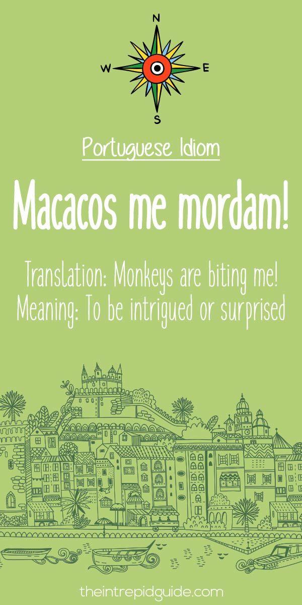 25 Hilarious Portuguese Phrases That Make No Sense  84806dbc882f3